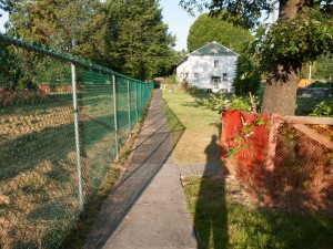 Last Row House in morning light, late summer 2012.