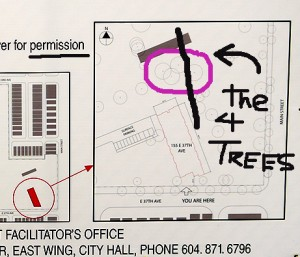 Development Permit shows location of heritage trees bisected by new power lines.
